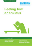 Feeling Low or Anxious Booklet