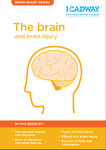 the brain and brain injury booklet graphic